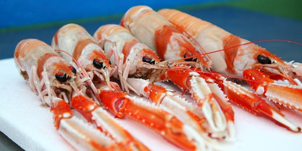 Fisco tributa marisco e pastelaria sem gluten com taxa máxima de IVA